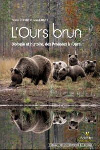 ours-brun-lauzet-etienne